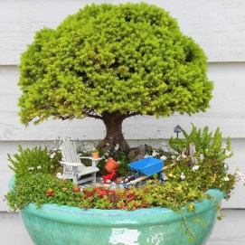 Brilliant Bonsai Plant Design Ideas For Garden34