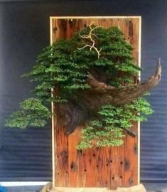Brilliant Bonsai Plant Design Ideas For Garden35