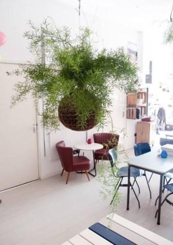 Brilliant Bonsai Plant Design Ideas For Garden40