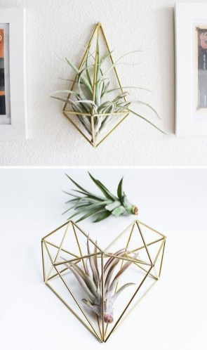 Simple Wall Plants Decorating Ideas17