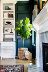 Simple Wall Plants Decorating Ideas22