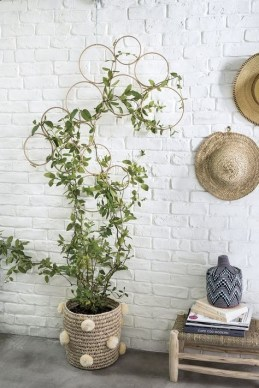 Simple Wall Plants Decorating Ideas24
