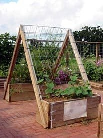 Brilliant Vertical Gardening Ideas10