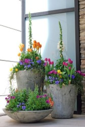 Pretty Floral Garden Decor Ideas19