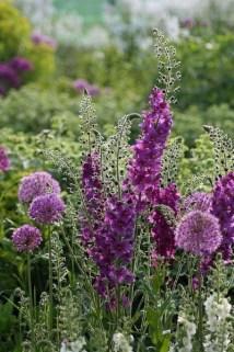 Extraordinary Summer Garden Ideas Just For You 23
