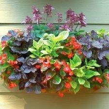 Lovely Window Design Ideas With Vase Flower Ornament41
