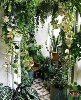 Superb Indoor Garden Designs Ideas For Home13