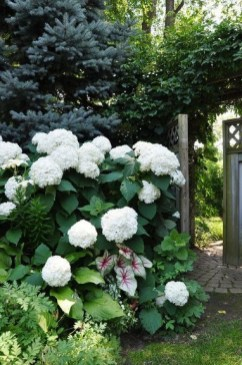 Superb Indoor Garden Designs Ideas For Home26