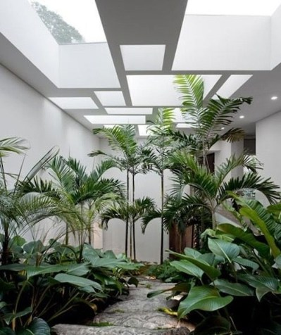 Superb Indoor Garden Designs Ideas For Home47