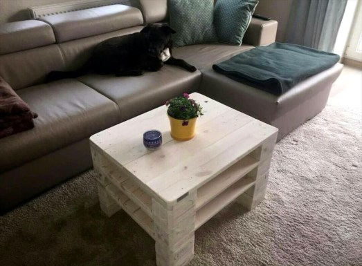 Fantastic Diy Projects Mini Pallet Coffee Table Design Ideas17