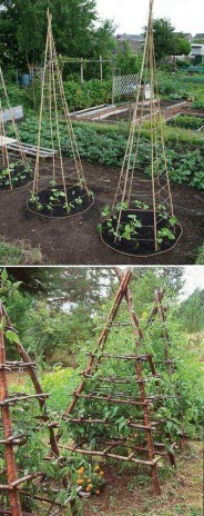 Inspiring Garden Ideas That Are Suitable For Your Home35