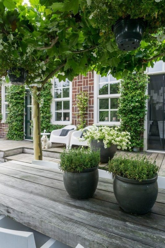 Inspiring Garden Ideas That Are Suitable For Your Home44