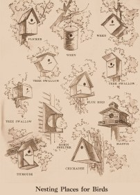 Elegant Bird House Ideas For Your Backyard Space15