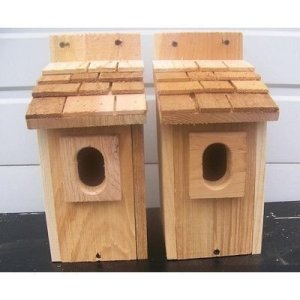 Elegant Bird House Ideas For Your Backyard Space22