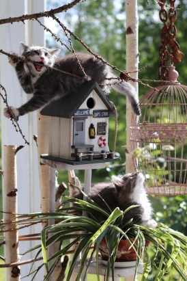 Magnificient Stand Bird House Ideas For Garden07