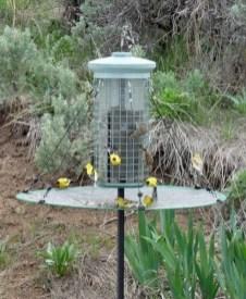 Magnificient Stand Bird House Ideas For Garden32