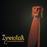 okadka_muz_psych