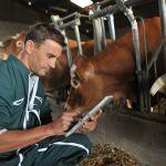 """Pomoc na """"Modernizację gospodarstw rolnych"""" od czerwca"""
