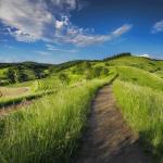 Zmiany<br> dla gospodarstw ekologicznych
